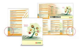 Three fold catalog for Food and Beverage